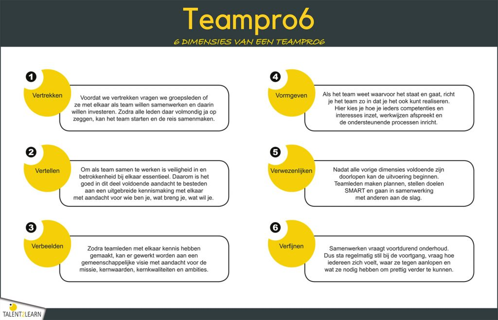Teampro6